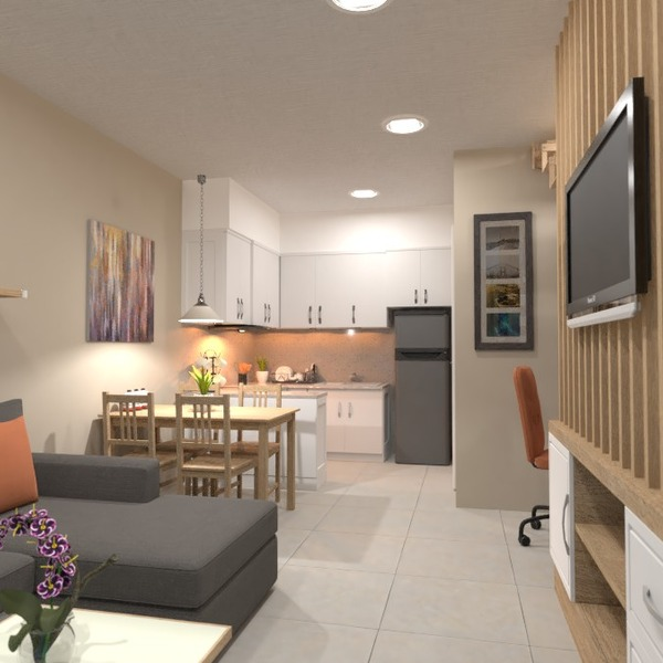 photos apartment house living room kitchen household ideas